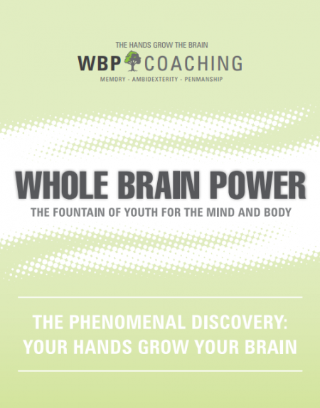 Michael J. Lavery – Whole Brain Power book
