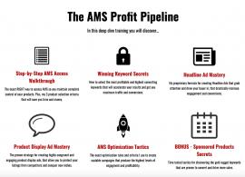 The AMS Profit Pipeline