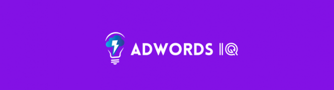Caitlin Schlichting – AdWords IQ Academy – Value $997
