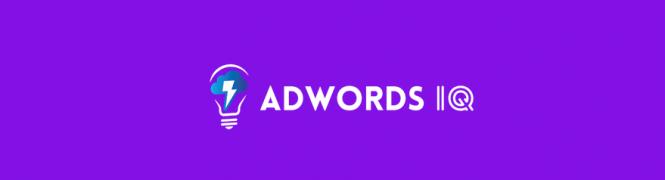 Caitlin Schlichting – AdWords IQ Academy – Value $997