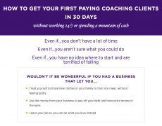 Luisa Zhou – Your First Paying Clients – Value $297