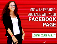 Moolah – Facebook Page Strategies X-Course