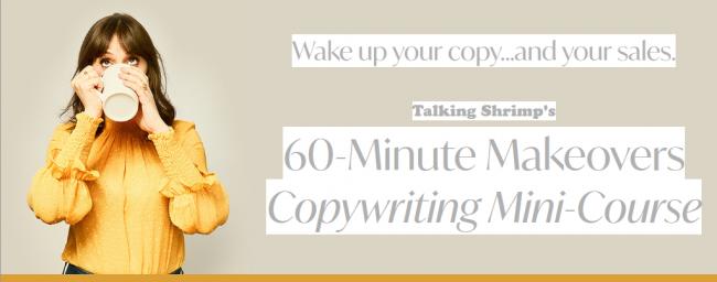 Laura Belgray - 60-Minute Makeovers Copywriting Mini-Course
