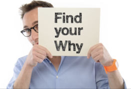 Simon Sinek – Why Discovery Course – Value $150